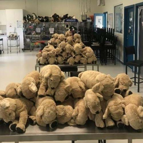 IKEA Richmond helps our Veterinary Nursing students with at-home learning